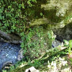 Tolmin Cave