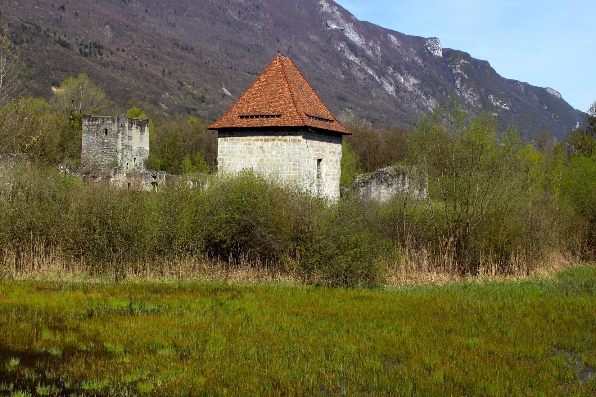 Le château de THOMAS II & son marais