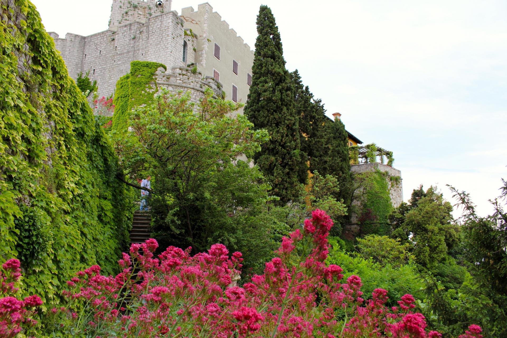 Le château de Duino